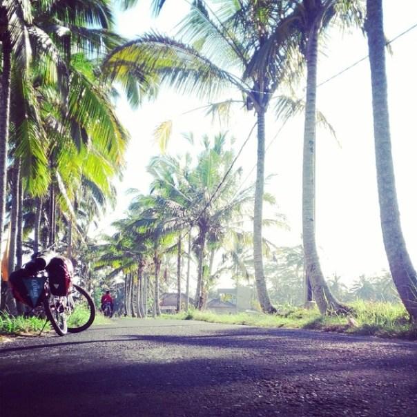 Serius enggak mau liburan ke Ubud dan merasakan jalana seperti ini?