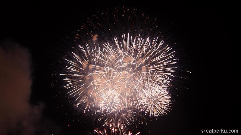 Sydney fireworks! (2)