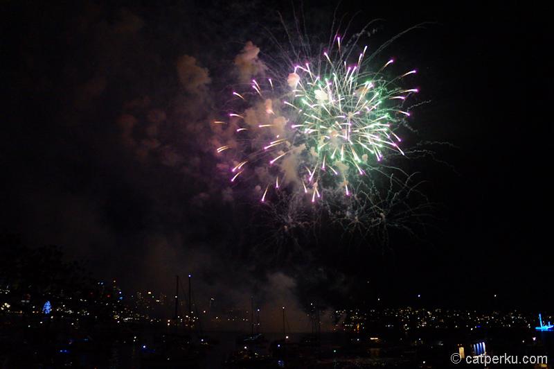 Sydney fireworks! (9)