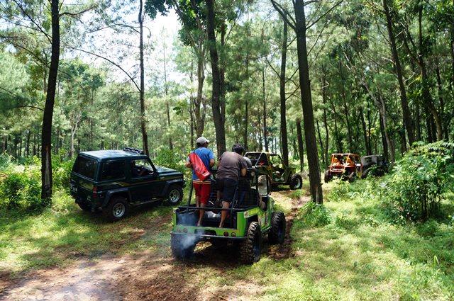 Wana wisata Bromo menawarkan wisata hutan yang menawan.