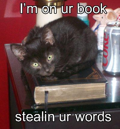 I'm On Ur Book Cat Meme - Cat Planet   Cat Planet