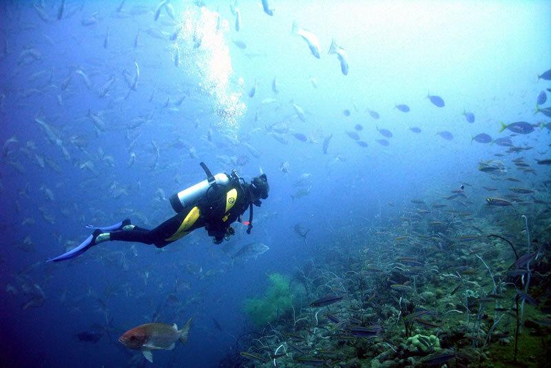 imagem-de-mergulhador-no-fundo-do-mar