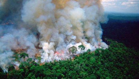 Image result for amazônia pegando fogo