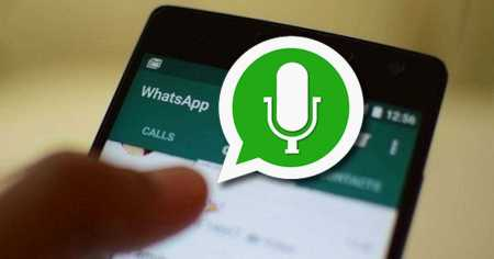 watsapp audios - Catriel25Noticias.com