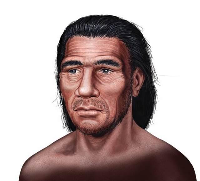 'Homo neanderthalensis'. Vivió hace 230 mil años. Su cráneo era alargado y robusto. Su nariz, amplia y de aletas prominentes; y poseía una mandíbula poderosa.
