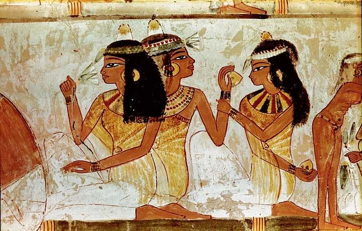 Los aceites esenciales de diferentes plantas han sido usados para propósitos terapéuticos desde hace siglos. Los antiguos egipcios solían utilizarlos.