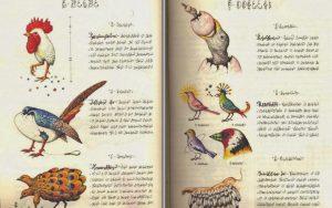 Un mensaje para los extraterrestres. El Codex Seraphinianus