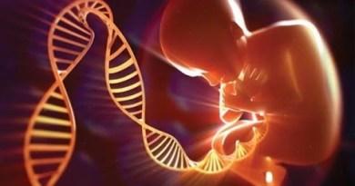 LOS MISTERIOS DEL ADN Y LA HIBRIDACIÓN ALIENÍGENA