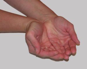 hands-1433597-638x508