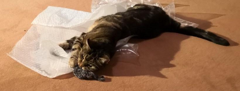 Katze liegt auf dem Boden auf Knisterfolie und hat eine Stoff-Maus erbeutet.