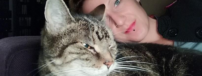 Katze liegt mit Mensch auf dem Sofa - Katzenberatung, Katzenpsychologie, Katzenverhaltensberatung, Katzenprobleme, Unsauberkeit, Aggression, Tiertraining