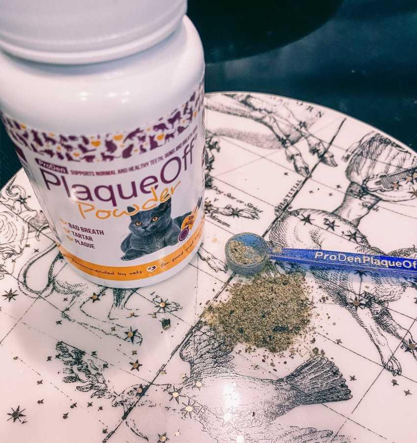 Cat Mom Life: ProDen PlaqueOff Powder for Dental Health