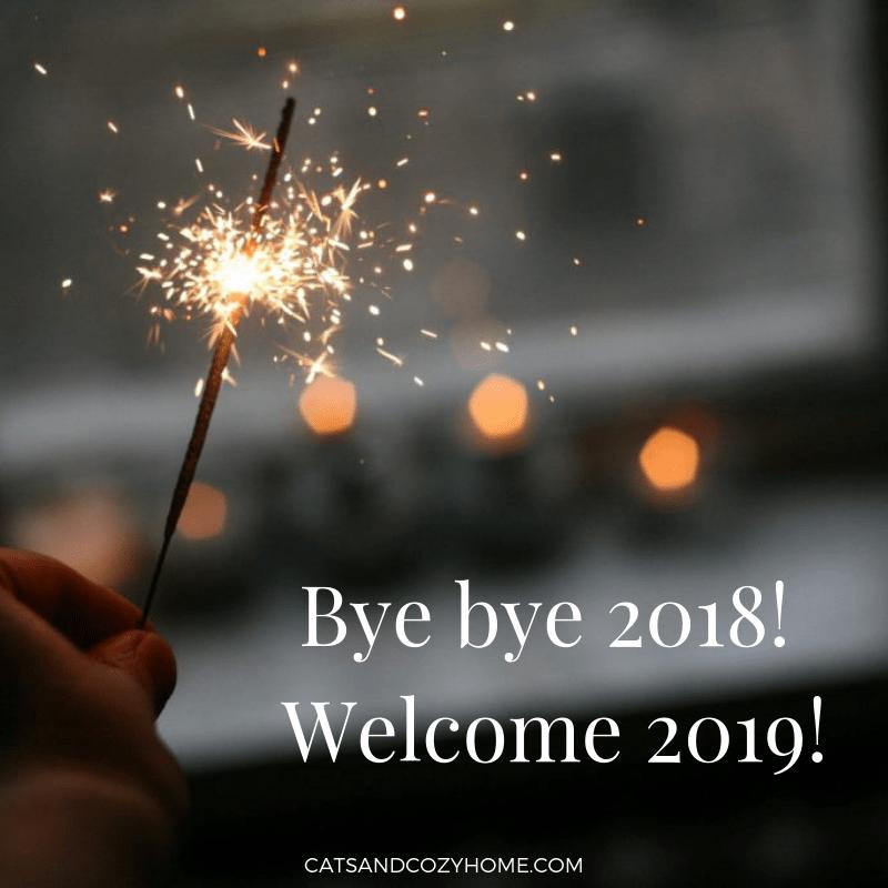 Bye bye 2018! Welcome 2019!