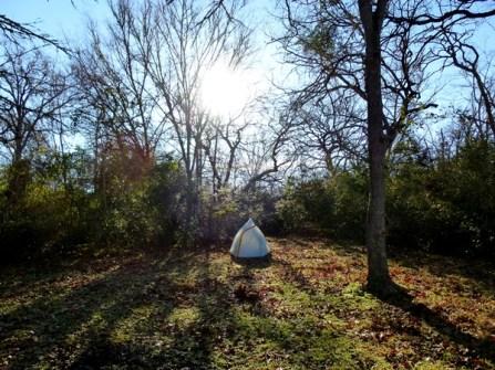 Good morning tent.