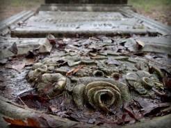 Flower gravestone in Springfield Cemetery