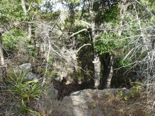 Bluffs along Pedernales River.