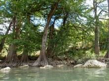 pedernales river 05