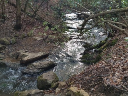 Creek. Somewheresville.