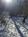 Muskrat Creek Shelter + SNOW!
