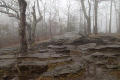 Top of Springer Mountain and the start of the A.T.