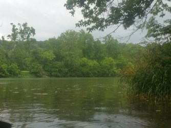 Hiding from the rain on the Shenandoah River.