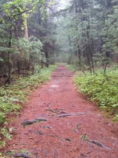 Squishy Trail