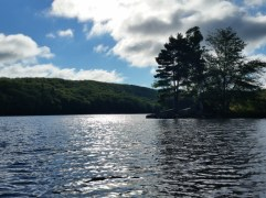 Upper Goose Pond
