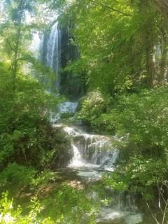 Bottom of Gorman Falls.