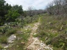 Rocky Lemons Ridge Pass with cactus.