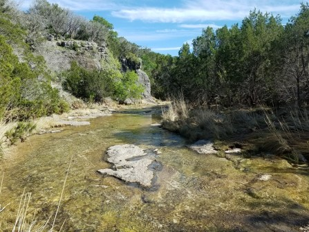 Stream crossing on the Spicewood Springs Trail.