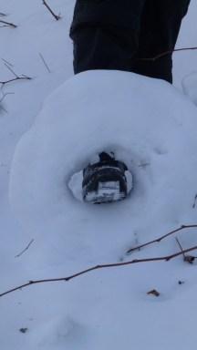 snowDonutP1050572