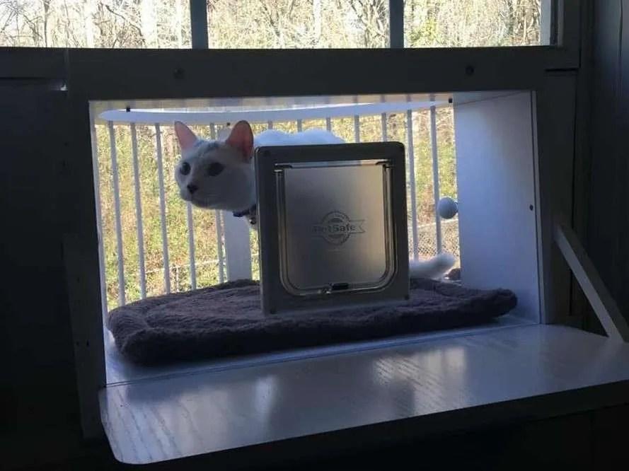 ... Window Ledge, Cat Window Patio, Cat Window Pen, Cat Window Perch, Cat  Window Seat, Cat Window Shelter, Cat Nda Window Box, Window Mounted Cat  Enclosure