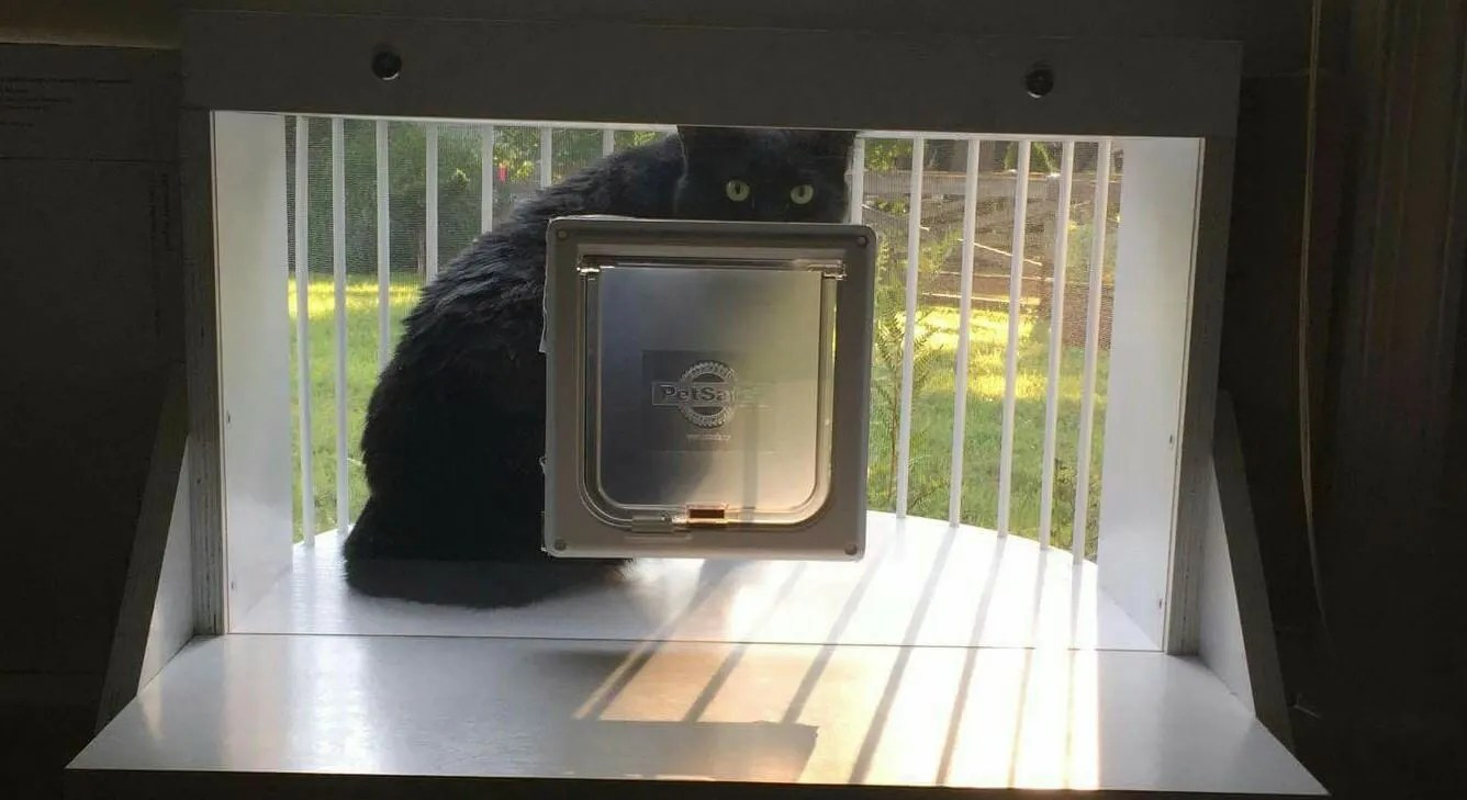 The Cat Solarium Weather Package Save $49.97
