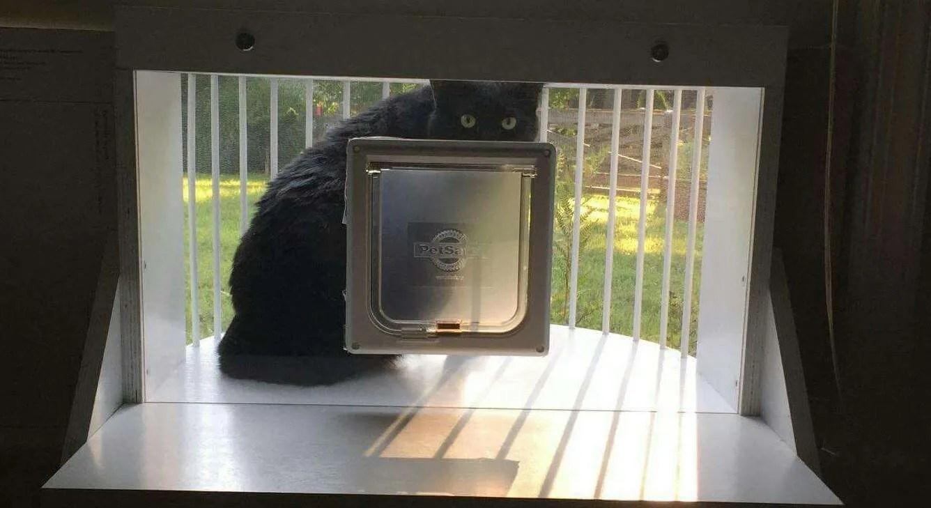 The Cat Solarium Veranda Package Save 39 97 Cat Solarium The Cat Window Box Catio Cat Balcony