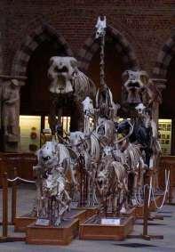 the skeleton parade