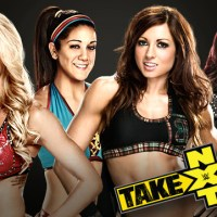 NXT Womens Championship Fatal 4 Way Made for Next NXT Takeover Pay Per View (January, 21st 2015)