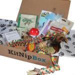 Monthly Subscription Boxes for Cats