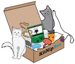 monthly subscription box for multicat households