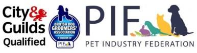 catwalk canines qualifications