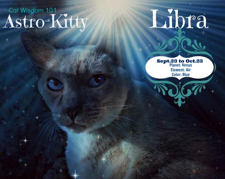 Astro Kitty Merlin, the Libra Cat – Cat Wisdom 101: Everything Feline since 2011