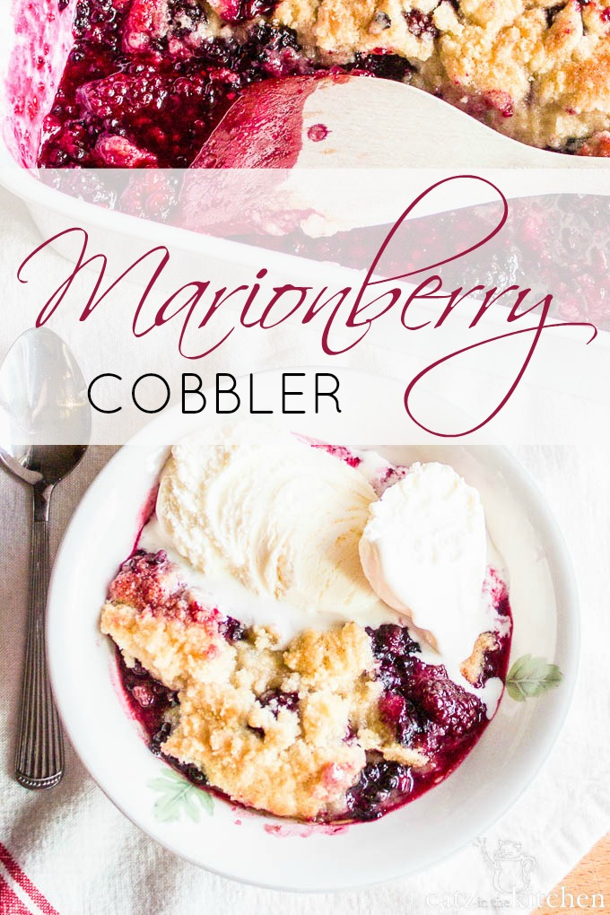 Marionberry Cobbler | Catz in the Kitchen | catzinthekitchen.com #berries