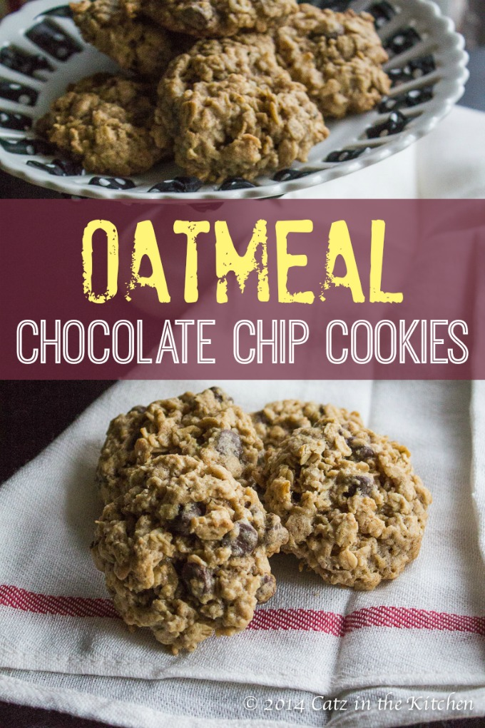 The Best Oatmeal Chocolate Chip Cookies | Catz in the Kitchen | catzinthekitchen.com | #chocolate #oatmeal #cookies