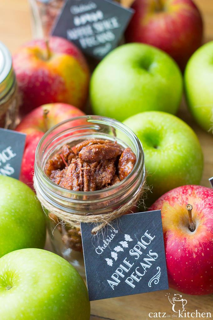 Apple Spice Pecans | Catz in the Kitchen | catzinthekitchen.com | #apple #fall #pecans