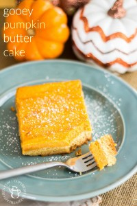 This quick and easy, make-ahead, moist, festive gooey pumpkin butter cake recipe is a perfect go to for get-togethers and potlucks this season!
