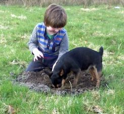 Boy with dog Sian Evans 1