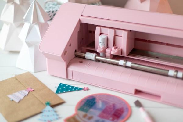 Pink Cameo 4