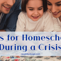 Homeschooling during crisis