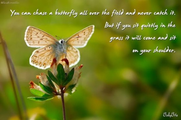 Image from cherokeebillie.wordpress.com