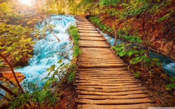 Image from www.wallpapers-jpg.net