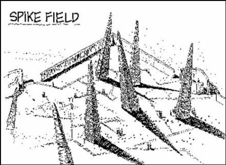 spike field